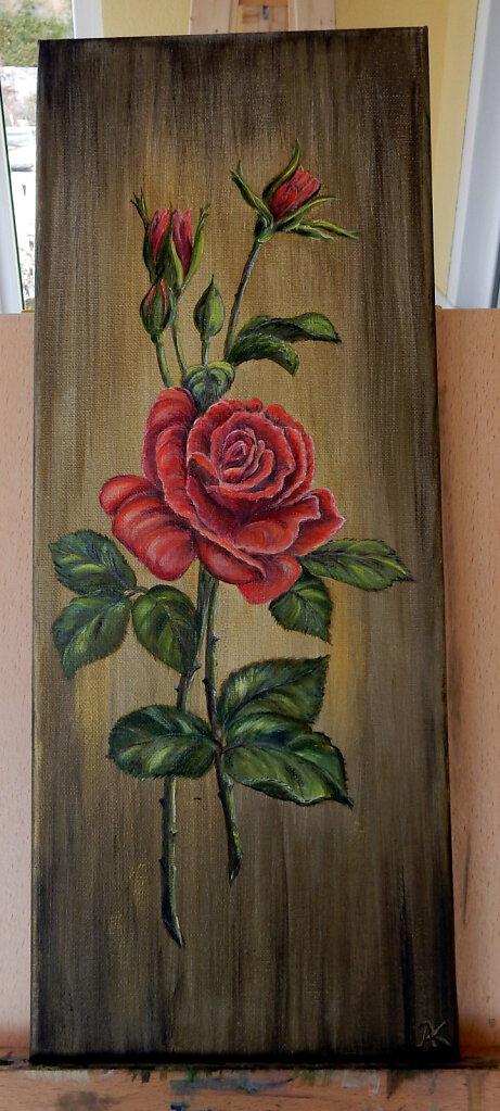 14-Rose.JPG