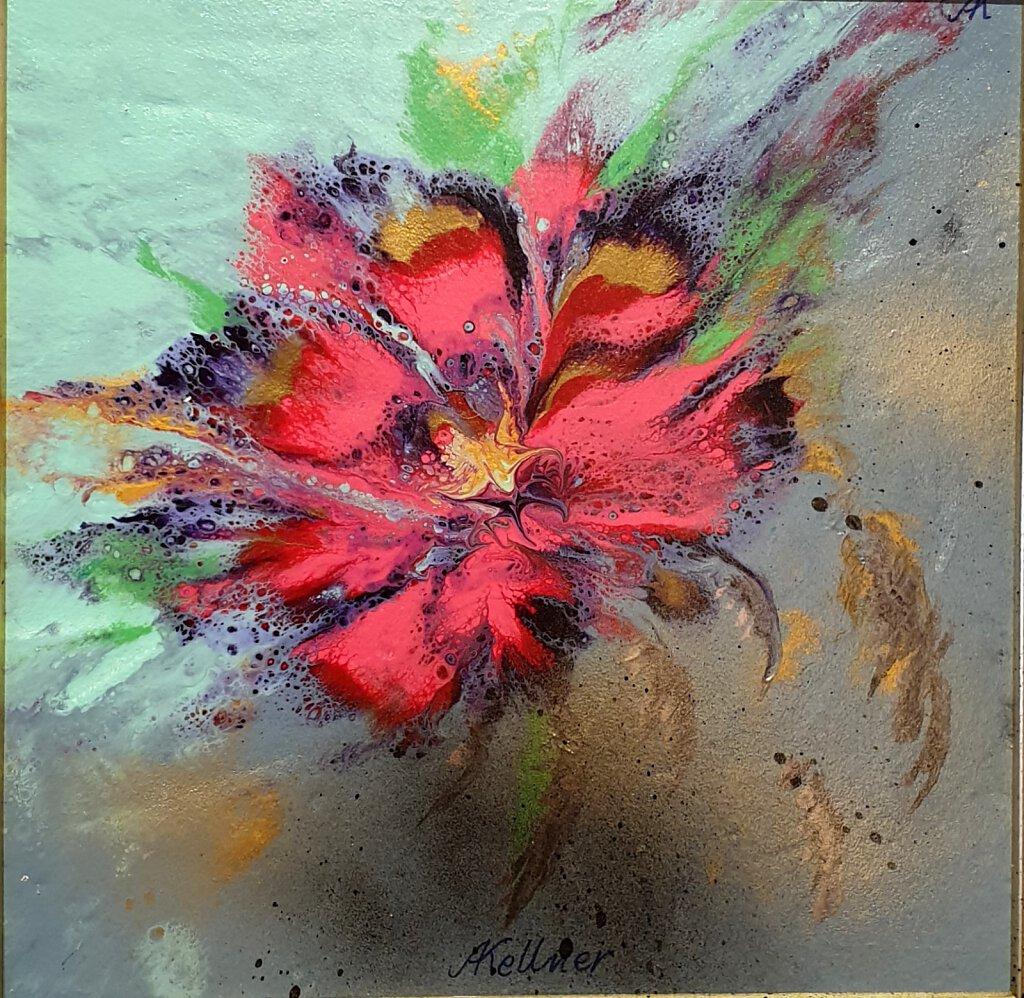 48-Feuerblume-1.jpg