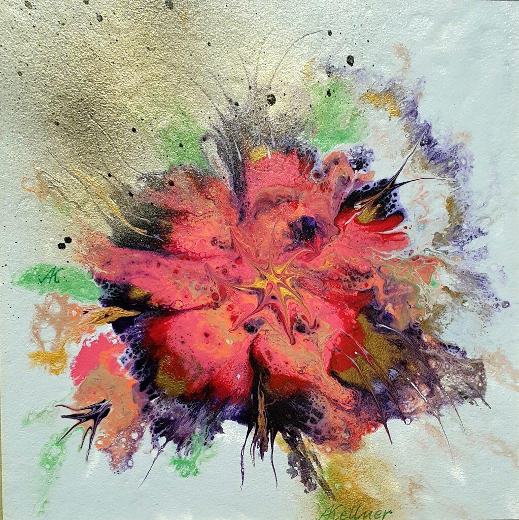 49-Feuerblume-2.jpg